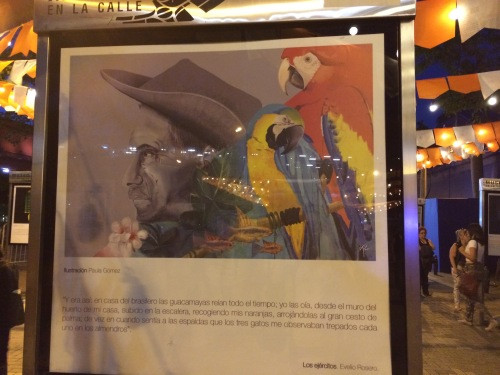 These displays were particularly striking: selected passages from Colombian novels, illustrated by artists in a glass display case. This one is of Evelio Rosero's Los Ejércitos (